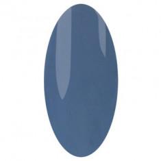 IRISK PROFESSIONAL 216 гель-лак для ногтей, водолей / Zodiak 10 г