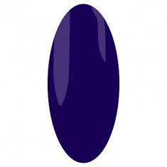 IRISK PROFESSIONAL 202 гель-лак для ногтей / Elite Line 10 мл