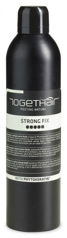 TOGETHAIR Лак-спрей сильной фиксации для укладки волос / Finish Concept Strong Fix 400 мл