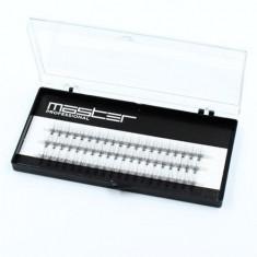 Master Professional, Пучки ресниц в коробке, 11 мм, изгиб C